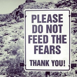 do-not-feed-the-fears-300x300